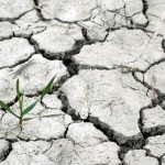 drought-1510788_1920