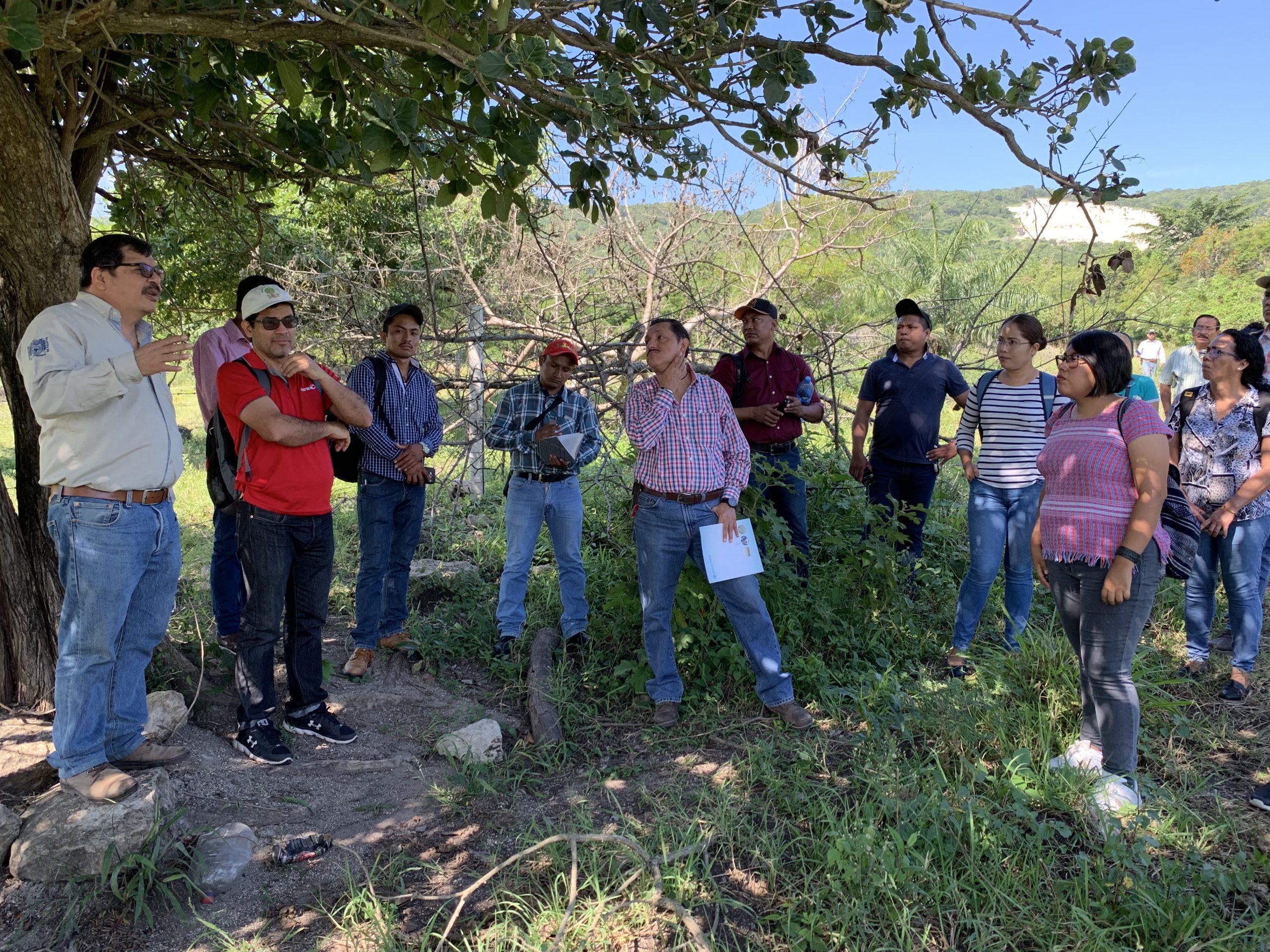 Capacitación a personal técnico de Chiapas relacionado con el sector ganadero © BioPaSOS