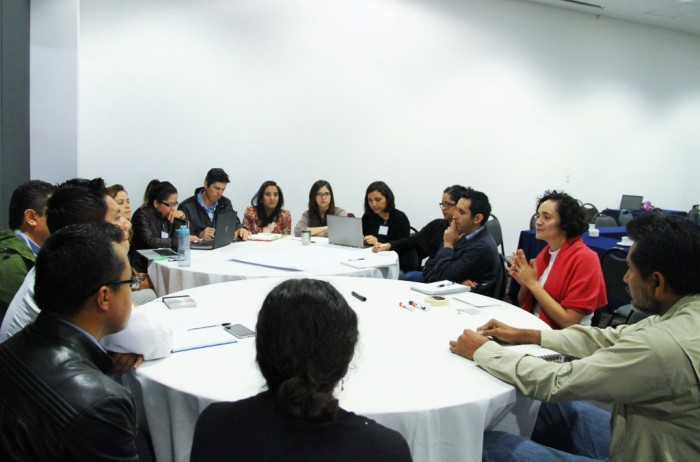 National Multilevel Governance, MRV and REDD + workshop in Mexico aimed at providing scientific knowledge and information to decision makers to contribute to the effective and efficient reduction of carbon emissions.