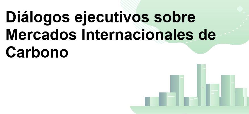 Instituto Universitario Europeo-Diálogos ejecutivos sobre Mercados Internacionales de Carbono